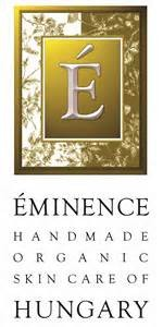 emience logo
